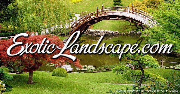 ExoticLandscape.com is on sale