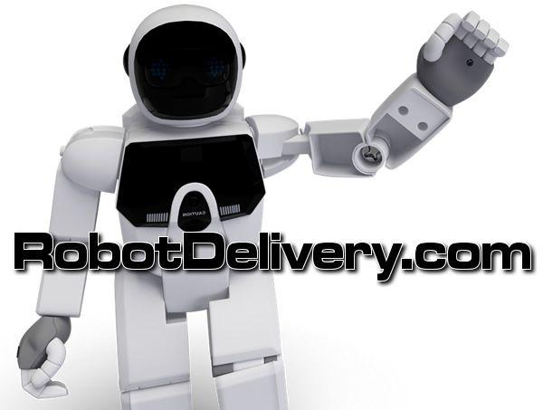 RobotDelivery.com